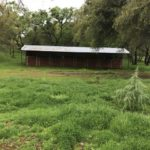4-stall shedrow horse shelter